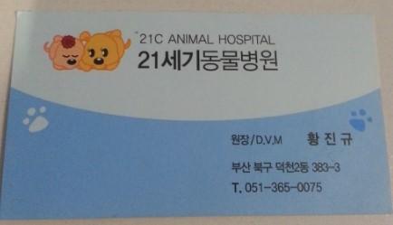21세기동물병원