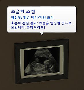 심즈4 초음파 검진 모드 : 네이버 블로그