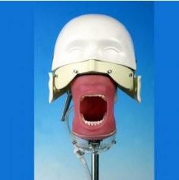 Equivalency process (ACS) 캐나다 치과의사 면허시험 : 네이버 블로그